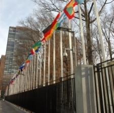 United-Nations---225.jpg